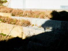 // In geology, a terrace is a step-like landform // Almada, Portugal // 31 July 2013  // José De Almeida photography // http://www.josedealmeida.com/