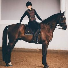 This is Friday's Black Diamond or Friday! She's my hand seven-year-old mare. She's a Dutch Warmblood cross. I rescued her from an abusive and neglectful home as an unbroken yearling with a leg injury. I trained and rehabbed her myself and now s Equestrian Outfits, Equestrian Style, Equestrian Fashion, Dutch Warmblood, English Riding, Horse Tack, Dressage Bridle, Bay Horse, Dressage Horses