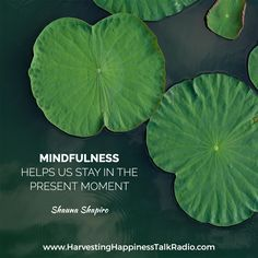 Dr. Shauna Shapiro teaches us how useful can mindfulness be to our lives.