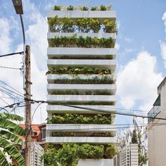 Stacking green house Ho Chi Minh