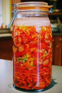 For The Love Of Condiments: brine fermented peppers as a base for hot sauce and fiery barbecue sauce – Tim's Food Obsession Fermented Hot Sauce Recipe, Brine Recipe, Hot Sauce Recipes, Tabasco Hot Sauce, Tabasco Pepper, Hot Pepper Sauce, Healthy Food Alternatives, Good Healthy Recipes, Canning Hot Peppers