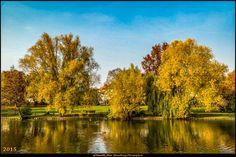 Volkspark Mariendorf 1 #Berlin #VolksparkMariendorf #Deutschland #Germany #biancabuergerphotography #igersgermany #igersberlin #IG_Deutschland #IG_Berlin #ig_germany #shootcamp #shootcamp_ig #canon #canondeutschland #EOS5DMarkIII #5Diii #pickmotion #berlinbreeze #diewocheaufinstagram #berlingram #visit_berlin #Mariendorf #herbst #autumn #bunt #colourful #Bäume #trees #AOV5k