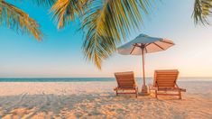 Exotic tropical beach landscape for background or wallpaper. Design of summer vacation holiday concept. Social Media Plattformen, Social Media Management Tools, Diabetes Management, Ideas Scrapbook, Beach Background, Beach Landscape, Beach Scenes, Beach Photography, Photography Editing