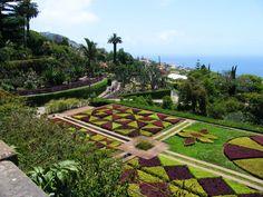 Cool Botanischer Garten Funchal