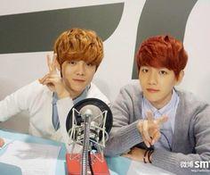 Baekhyun & LuHan EXO