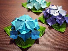 おりがみ【立体・むずかしめ】アジサイ(紫陽花)の折り方、大きいサイズ