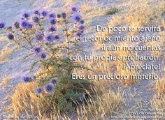 Blog, World, Frases, Self Esteem, Thoughts, Quotes, The World, Blogging, Peace