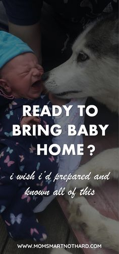 Bringing baby home for the first time is so exciting, but are you prepared? This article covers everything you need to know to bring your baby home including introducing pets, preparing your home, and getting started with breastfeeding.