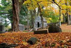 This isn't just a graveyard –it's an arboretum, sculpture garden and…