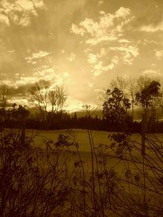 Sunset sepia