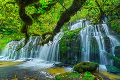 New Zealand is known for hosting some of the most beautiful natural landscapes and Purakaunui Falls in the world. This country is divided into two large islands: The North Island and the South Island, the second is currently the most visited by tourists due to the huge number of natural attractions with an indescribable beauty. [...Read More]