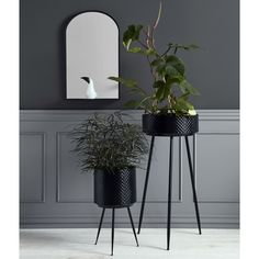 I've just found Black Scalloped Embossed Iron Planters. Black planters on a stand availble in three sizes. Black Planters, Metal Planters, Large Planters, Black Indians, Interior Plants, Arte Floral, Plant Holders, Plant Decor, Black Metal
