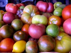 Heirloom, organic tomatoes!