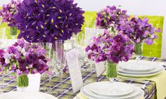 Beautiful purple flowers - Prachtige paarse bloemen