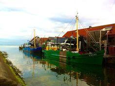 #Yerseke, #Zeeland, #Niederlande, #Austern