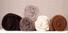 Das Filzwolle Set Natur in 5 Farben wird aus ungefärbter mittelfeiner österreichischer Bergschafwolle zusammengestellt. Das Wollvlies wird in ca. 8 cm breiten Rollen verarbeitet. Es eignet sich gut zum herstellen von Strickgarn, aber... Wool, Natural Colors, Sheep