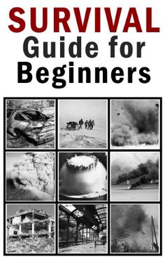 FREE TODAY    Amazon.com: Survival Guide for Beginners eBook: Vitaly Pedchenko: Kindle Store