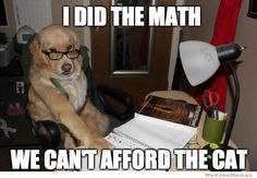 Labs are smart enuf to do math!