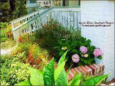 TampaLandscapeDesign South Tampa Color Cottage Garden.  Lauren Shiner, Tampa Landscape Design, LLC, tampalandscapedesign.com