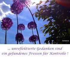 ... unreflektierte #Gedanken sind ein gefundenes Fressen für #Kontrolle !