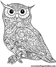 Owl Coloring Page 4