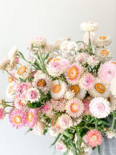 Cut Flower Garden, Flower Farm, My Flower, Flower Power, Beautiful Flowers Pictures, Flower Pictures, Pretty Flowers, Floral Wedding, Wedding Flowers