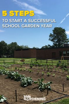 Are you planning for a successful year in the school garden? Complete these five simple steps to make sure you and your garden are ready for a new school year. garden plans 5 Steps for School Gardens School Gardens, New School Year, Garden Planning, Success, Activities, How To Plan, Education, Simple, Onderwijs
