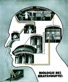 Long overlooked, his works have been dusted off by the Berlin Medical History Museum, Which is hosting a major new exhibition Fritz Kahn. En ..