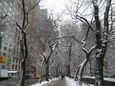 NYC, I need to go in the winter.