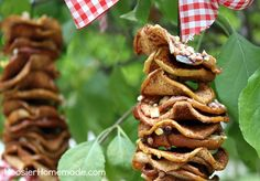 Diy Dried Apple Bird Feeder