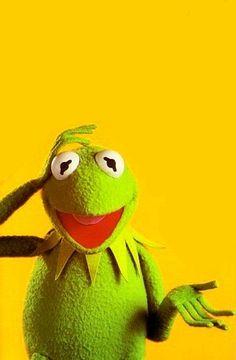 Kermit the Frog Poster Animal Jokes, Funny Animals, Sapo Kermit, Sapo Meme, Frog Wallpaper, Kermit The Frog, Memes Br, Jim Henson, Big Bird