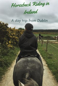 A day trip to the Dublin mountains is a must-do if you are in Ireland. Hilltop Treks not only takes you on a day trip, but you can go on a hiking or horseback riding activity while there! Read on to learn why Hilltop Treks is the perfect day trip operator in Ireland.