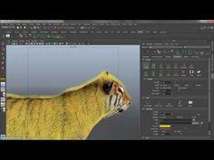 Using Xgen Tools Tutorial - Maya 2015 - Autodesk - YouTube