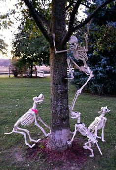 cheap diy halloween decorations 129 World's Insanest Scary Halloween Spukhaus Ideen - Haus Spooky Halloween, Halloween Geist, Halloween Outside, Halloween Skeleton Decorations, Cheap Halloween Costumes, Halloween Displays, Holidays Halloween, Funny Halloween, Halloween Desserts