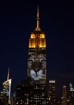 Cecil The Lion Projected Onto Empire State Building With Other Endangered Animals
