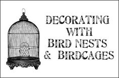 Decorating with bird nests & birdcages - great ideas!