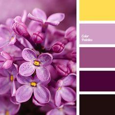 Color Palette #3232