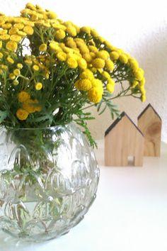 """Rainfarn-Zeit (oder """"Schwarz Weiß & Gelb"""")"""