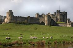 Alnwick Castle and the Scottish Borders Day Trip from Edinburgh ...