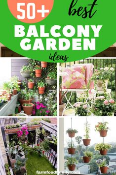 balcony garden Some areas have specific building codes. You dont want to break any rules and have to redo your balcony garden. The idea of a balcony garden is grand, but the reality of having your own private balcony garden is better. Gardening Gloves, Gardening Tips, Organic Gardening, Balcony Gardening, Gardening Services, Indoor Gardening, Lawn Edging, Diy Garden Projects, Garden Ideas