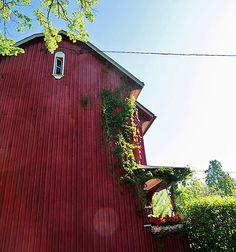 Vanhan talon hyvä henki