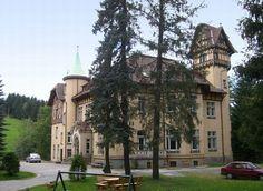 Haus (Villa) kaufen in 08318 Wolfsgrün, Sachsen