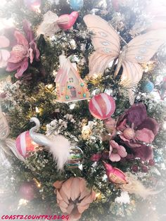 Pink Christmas Tree with Magnolias, King Protea flowers, Birds and Butterflies Pink Christmas Tree, Christmas Wreaths, Orchid Tree, Rainbow Beach, Colorful Parrots, Pink Bird, Bottle Brush Trees, Flowering Trees, Tropical Paradise