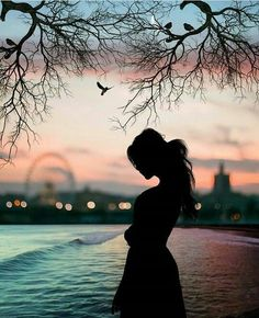 Peaceful Examples of Sunset Photography Silhouette Photography, Shadow Photography, Dark Photography, Silhouette Art, Sunset Photography, Girl Photography Poses, Creative Photography, Scenery Wallpaper, Cute Wallpaper Backgrounds