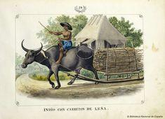 INDIO CON CARRETON DE LEÑA. Lozano, José Honorato 1821- — Dibujo — 1847