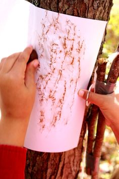 When did you last try bark rubbings, leaf printing or seed-collecting? You can make the most extraordinary art from combining rubbings, prints and collage… [. Autumn Crafts, Nature Crafts, Art For Kids, Crafts For Kids, Land Art, Tree Bark, Kids Prints, Collage, Texture Art