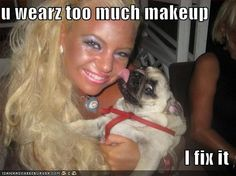 LOL Only if every girl in my school had this dog.