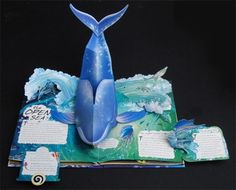 #Pop up books van Santoro, Ludio and Meera Santoro Journey into the mysterious world under the sea as 3-D pop-ups swing off the page, bringing to life whales, dolphins, angler fish, and much more! Filled with stunning art and interesting facts about various oceanic zones--such as coral reefs, the frozen sea, the deep sea, and much more--Lucio and Meera Santoro take readers on an interactive and imaginative jour