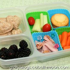 Muffin Tin Meal To-Go Bento MTM