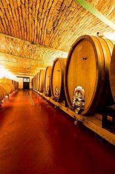 Weingut Krispel, Straden Floor Texture, Wine Cellars